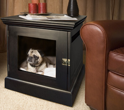 TEACH YOUR DOG & PUPPY TO LOVE THE CRATE