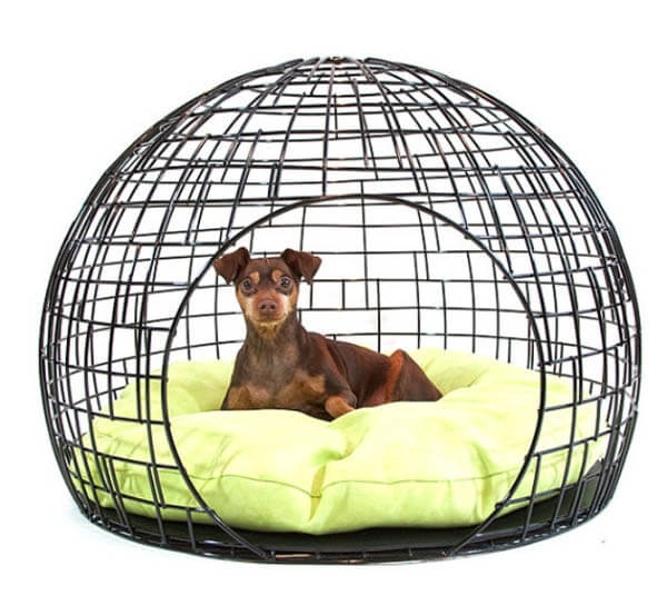 COMFORTABLE DOG CRATES