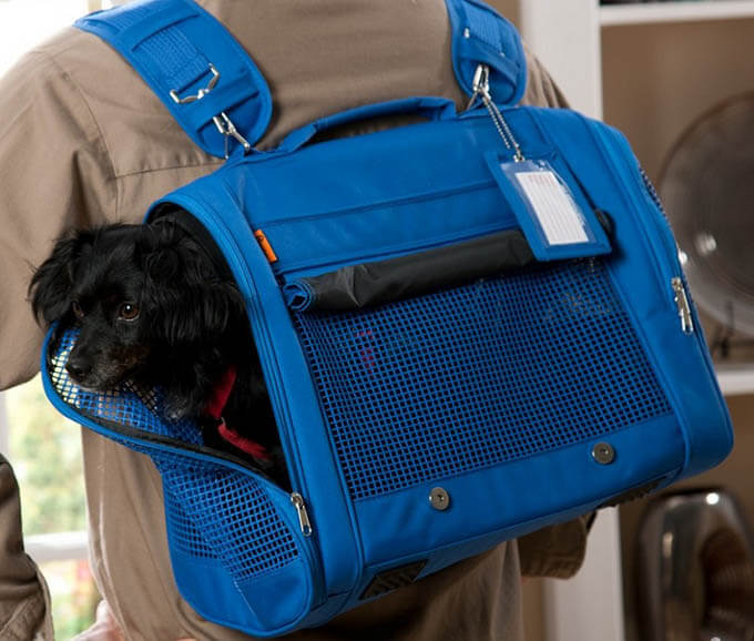 DOG & PUPPY carrier USES, OUTDOOR SADDLE BAGS, DOG CARRYING HARNESS, CARRIER, PETCO, RUFFWEAR, CESAR MILLAN, KURGO