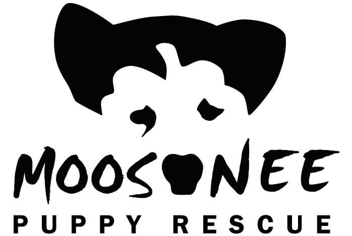 WWW.MOOSONEEPUPPYRESCUE.COM