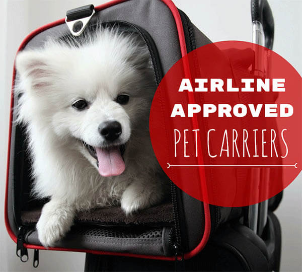 AIRLINE APPOVED DOG CARRIERS, BASKETS, BEST DOG & PUPPY CARRIER BACKPACKS REVIEWS, BUY, COMPARISON, AIRPLANE TRAVEL WITH DOG