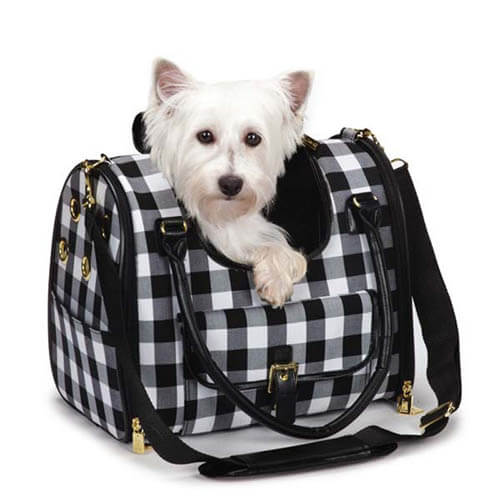 TEACH DOG & PUPPY TO ENJOY CARRIERS, OUTDOOR SADDLE BAGS, DOG CARRYING HARNESS