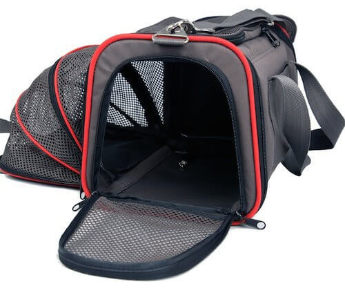 BUY THIS DOG AIRLINES APPROVED CARRIER BACKPACK at WWW.AMAZON.COM