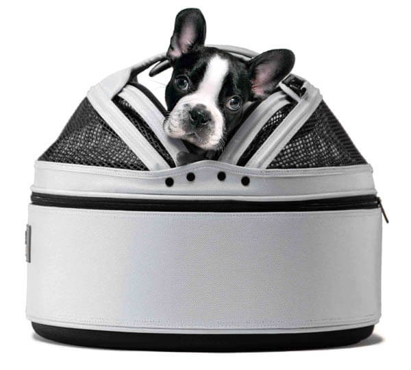 DOG & PUPPY CARRIER SIZE, HOW TO FIT CHOOSE BEST DOG BAG