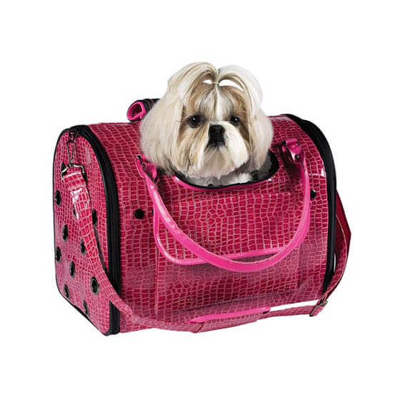 BEST DOG & PUPPY HIKING CARRIERS, BAGS, BACKPACKS