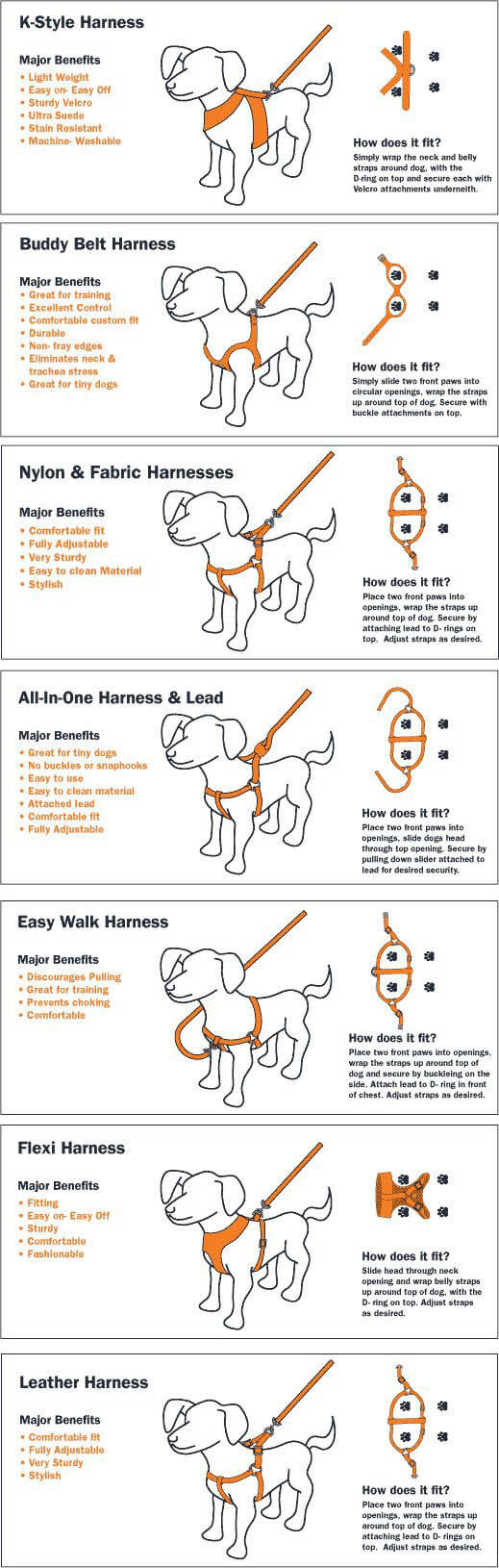 DOG HARNESS TYPES INFOGRAM, INFOGRAPHIC - PRESS TO SEE IN FULL SIZE !!!