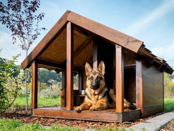 DOGHOUSE RAISED FLOOR, DOG AND PUPPY CAGE, KENNEL, IGLOO