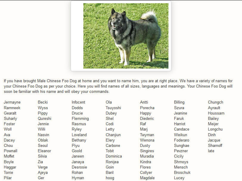 CHINESE & JAPANESE FOO DOGS & LIONS NAMES LIST by WWW.DOGNAMES.TOP