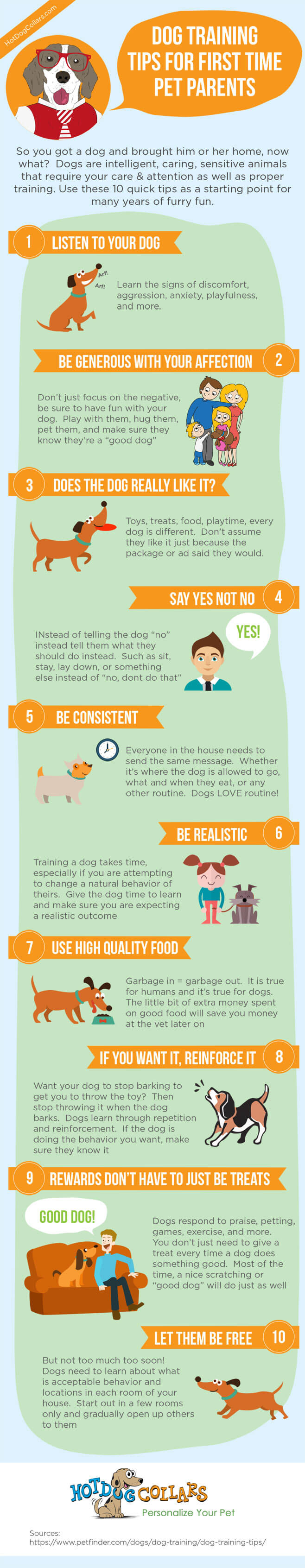 Dog Training & Teaching INFOGRAFICS - PRESS TO SEE IN FULL SIZE!