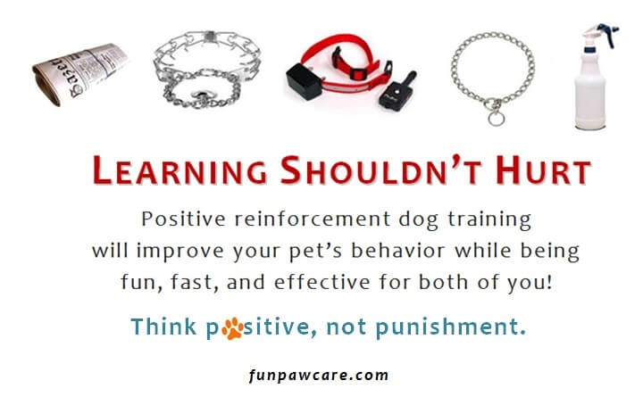 DO NOT HURT YOUR DOG FOR TRAINING REASONS!