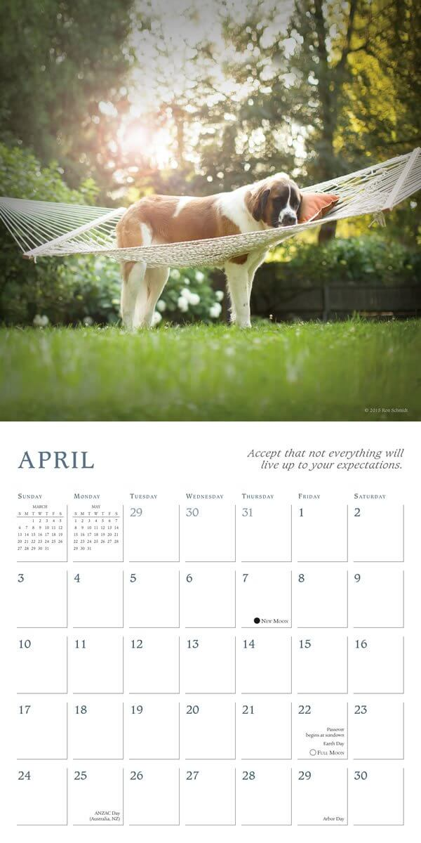 DOG and PUPPY CALENDARS - HOME, DESK, WALL