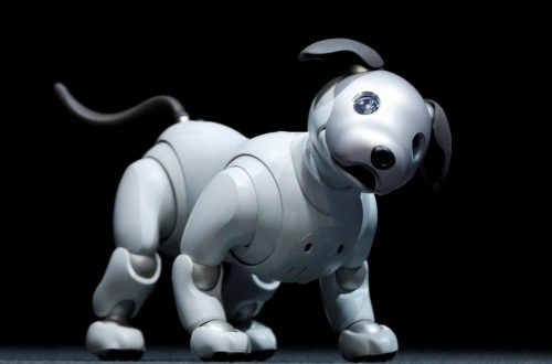 ROBOT DOG TOYS GUIDE
