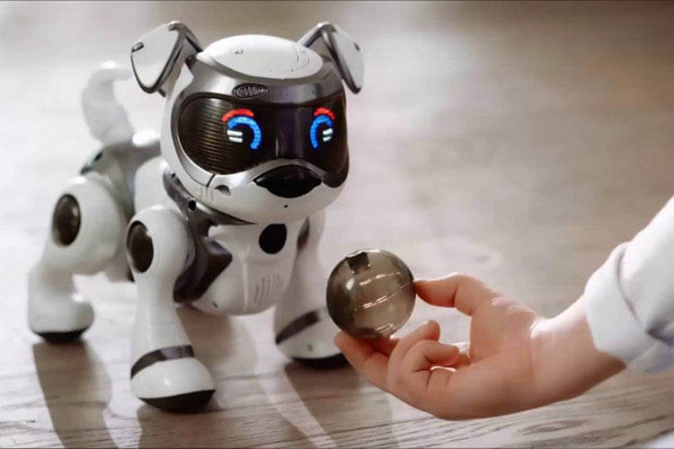 ROBOTIC PETS IN HUMAN LIVES - THE RESEARCH