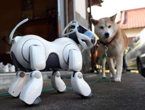 MOST ADVANCED ROBOTIC DOGS IN THE WORLD