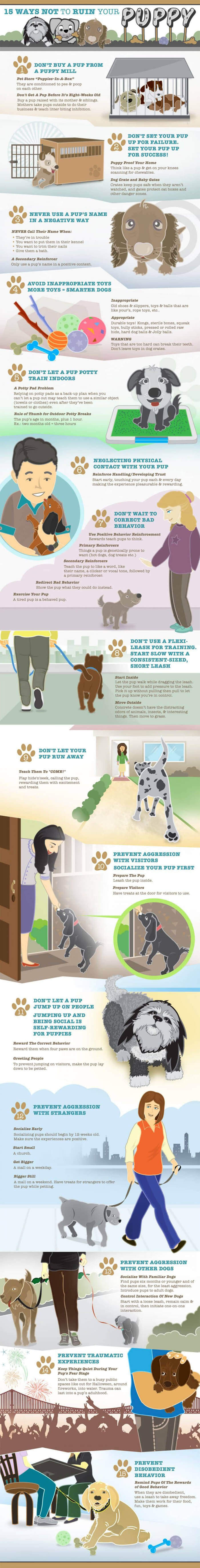 HOW TO SOCIALIZE YOUR PUPPY INFOGRAPHICS