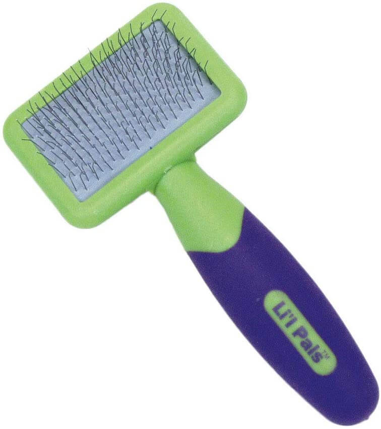 BEST BRUSH FOR YOUR DOG