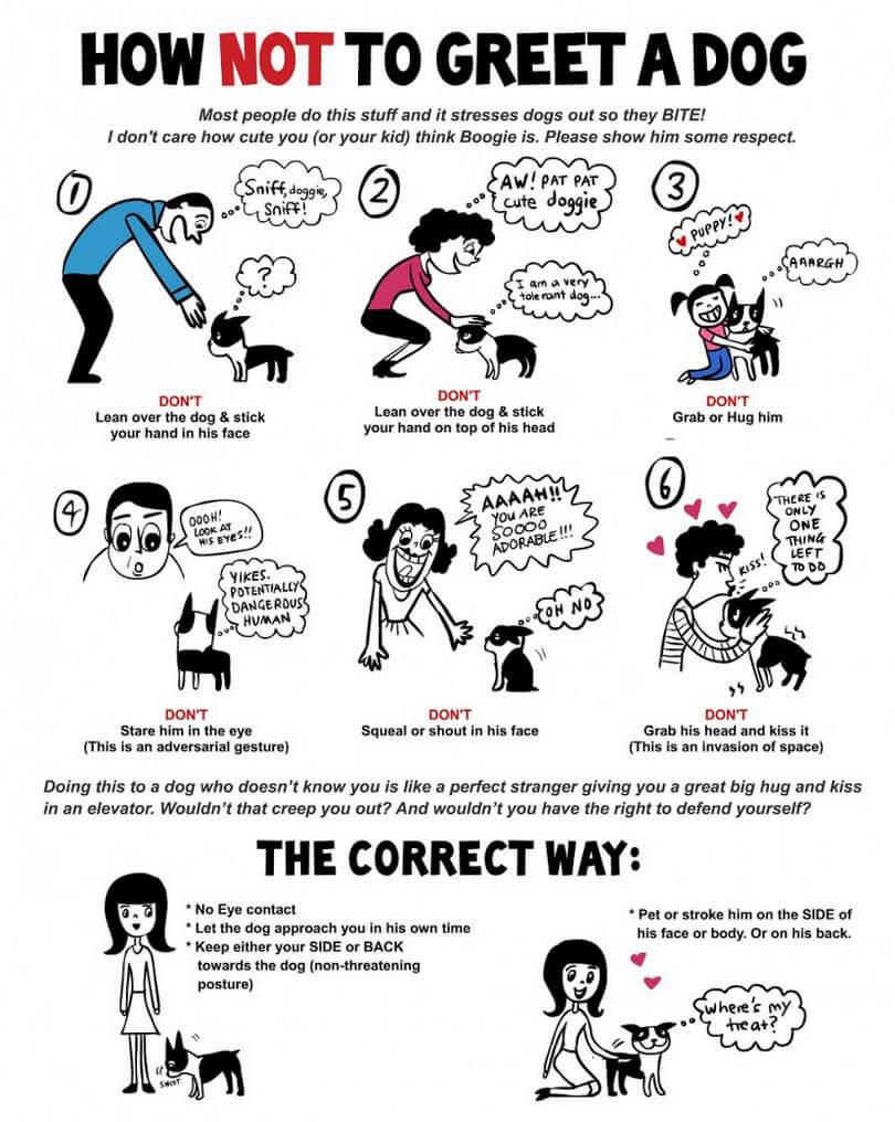 HOW TO HELP CHILD TO OVERCOME FEAR OF DOGS INFOGRAM, INFOGRAPHICS