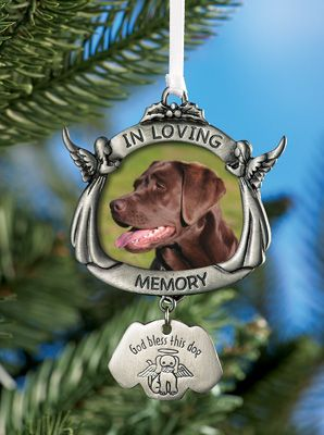 Virtual Dog Memorial, DOG DEATH, R.I.P, Dog loss