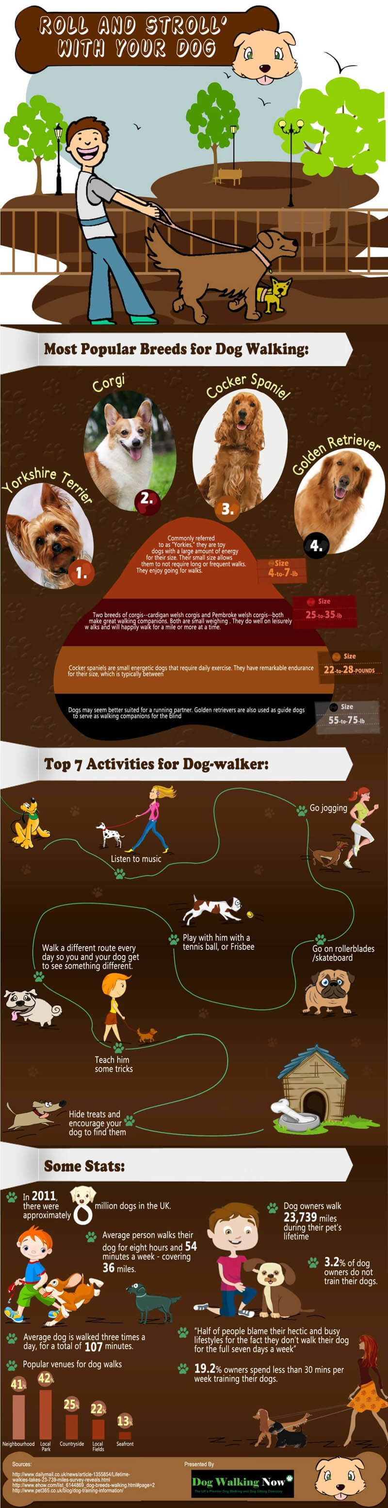 dog and puppy infograms, infographics