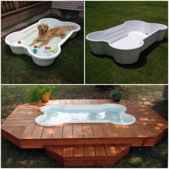 HOMEMADE DIY DOG POOLS, UNDERWATER DOGS & PUPPIES, HOW TO BUILD MAKE DOG POOL