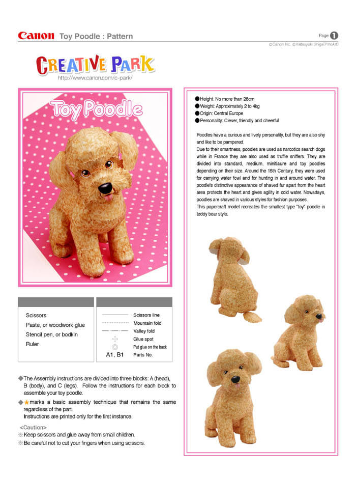 Step By Step Instructions How To Make Origami A Poodle. Stock ... | 990x700