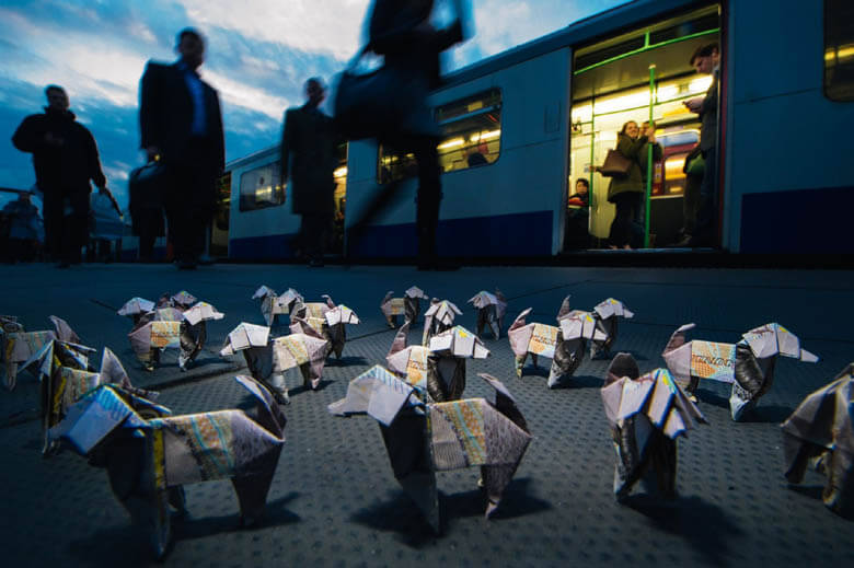 origami Dog & Puppy Photos, Videos, Images - This photo (c) by Mikael Buck