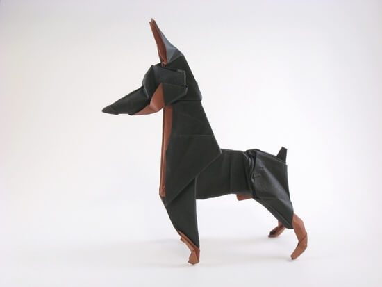 Doberman pinscher by Ares Alanya (Press to Buy online this Origami Dog Template)