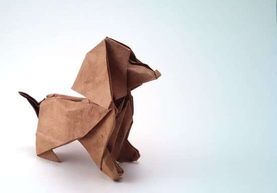 Joe Cocker by Patricio Kunz Tomic (Press to Buy online this Origami Dog Template)
