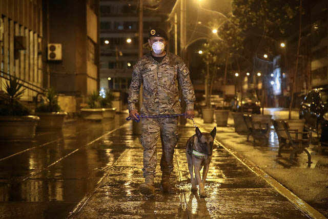 POLICE DOGS WORLDWIDE - THIS IMAGE COURTESY of Ministerio de Defensa del Peru