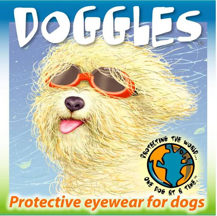 Buy Doggles Online