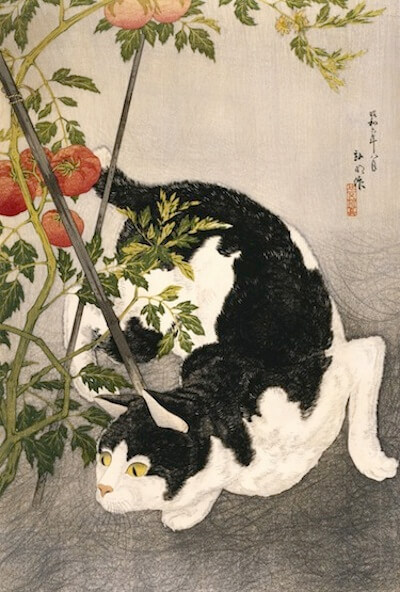This image (c) by Takahashi Hiroaki (Shotei), published by Fusui Gabo, Cat Prowling Around a Staked Tomato Plant, 1931, woodblock print. THE MUSEUM OF FINE ARTS, HOUSTON/GIFT OF STEPHANIE HAMILTON IN MEMORY OF LESLIE A. HAMILTON.