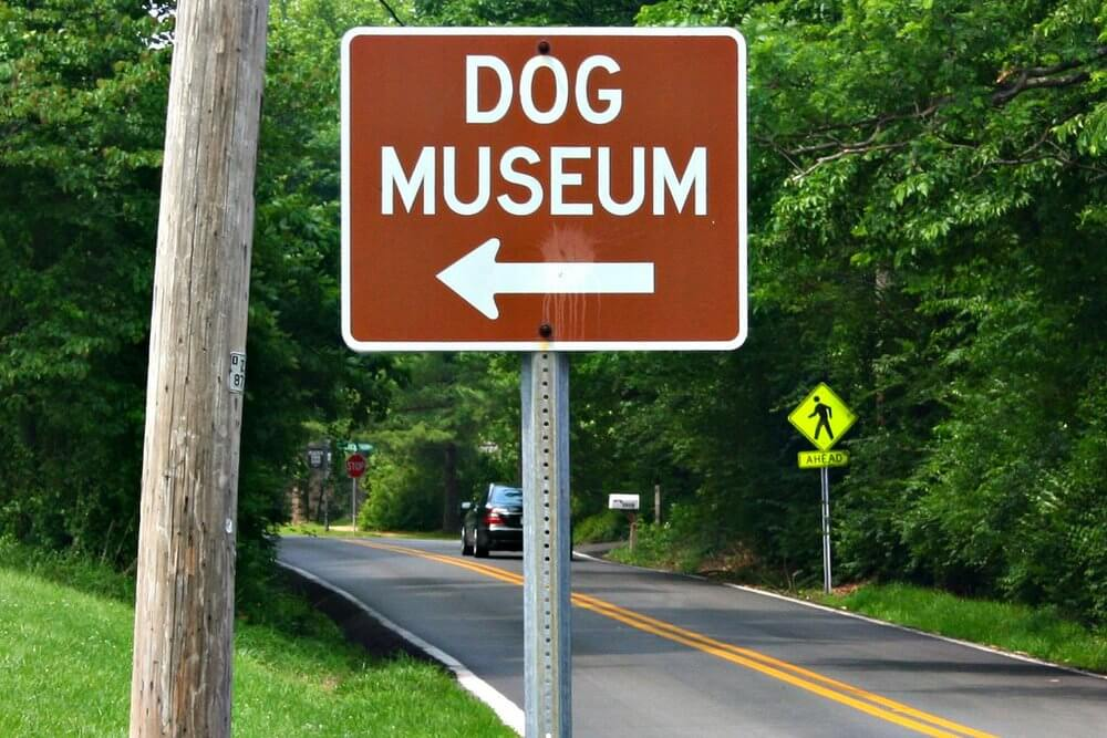 Dog Museums and Art