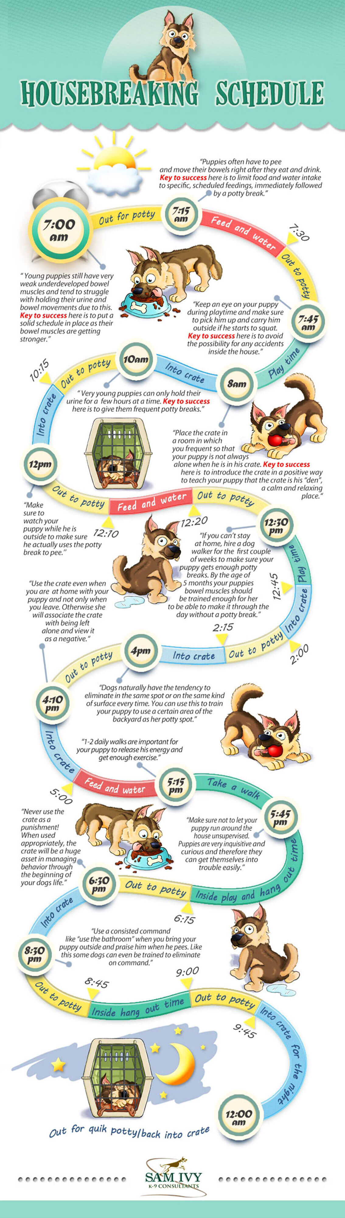 PUPPY TRAINING INFOGRAPHICS - PRESS TO DOWNLOAD !