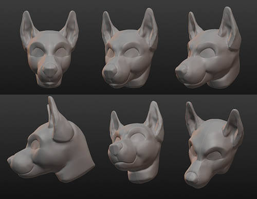 Dog Head Structure