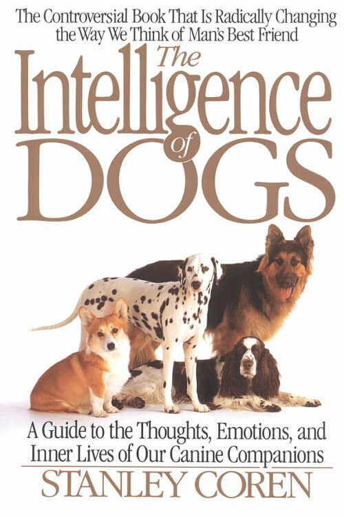 Dog Intelligence Test