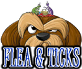 DOG FLEA & TICKS