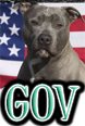 DOGS & GOVERMENT and LAWS