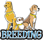 DOG BREEDING & BREED GROUPS