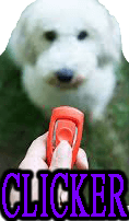 DOG CLICKER TRAINING - DOGICA®