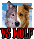 DOG vs WOLF - DOGICA&reg - DOGICA&reg