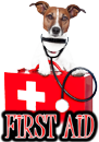 DOG VETERINARY