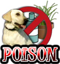 DOG POISONS