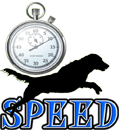 DOG SPEED - DOGICA&reg