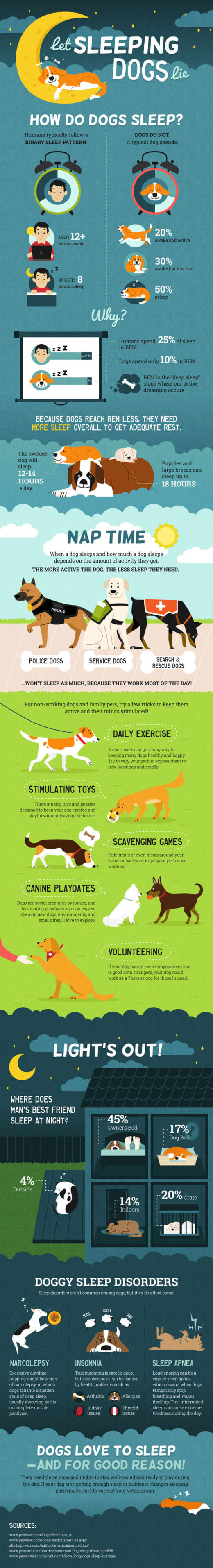 PRESS TO SEE IN FULL SIZE - dog and puppy infograms, infographics