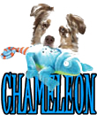 DOG vs CHAMELEON
