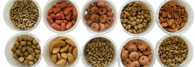 DOG FOOD TYPES