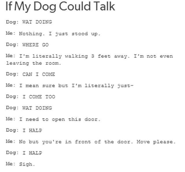 Talking Dogs, Dogs Talk