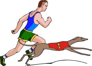 Dog vs Human Speed, Racing, Competition