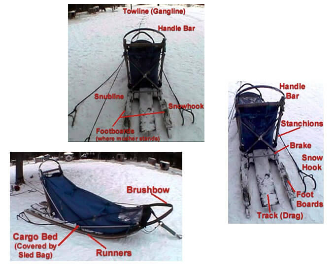 Sled Dogs Mushing Harness Measure