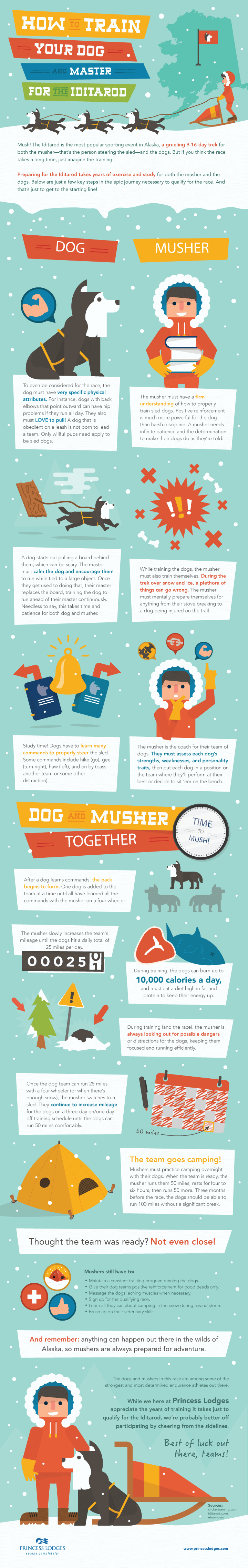 dog and puppy infograms, infographics - PRESS TO SEE THE FULL SIZE!